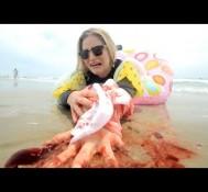 MAGIC! – Rude (Shark Week Parody)